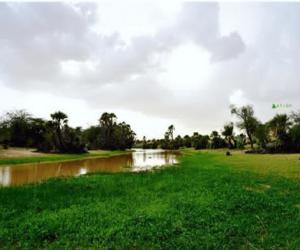 من اخبار الغيث : تساقطات مطرية عل معظم مناطق الوطن